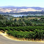 wine-country-california